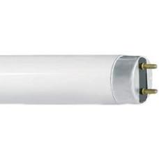 Лампа Camelion T8 10w/4200